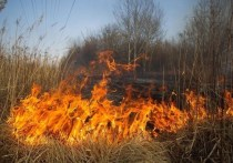 Жителям Серпухова рассказали о вреде одной из весенних традиций