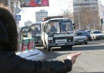 В Кемерове с 1 мая начнут работать 38 сезонных маршрутов