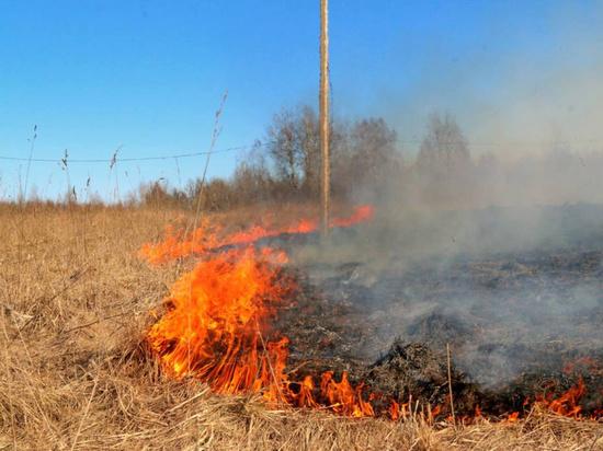 В Свердловской области установлен особый противопожарный режим