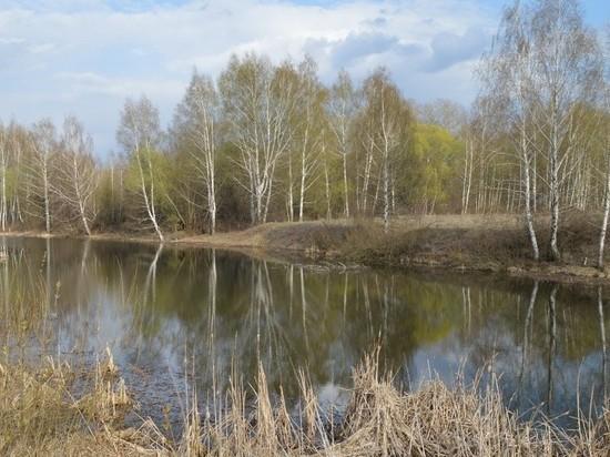 В Старожиловском районе в реке массово погибла рыба