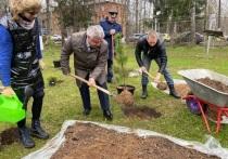 В память о погибших летчиках в Шайковке заложили хвойную аллею