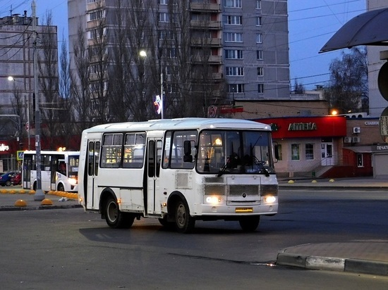 На двух автобусных маршрутах Серпухова могут заменить перевозчика