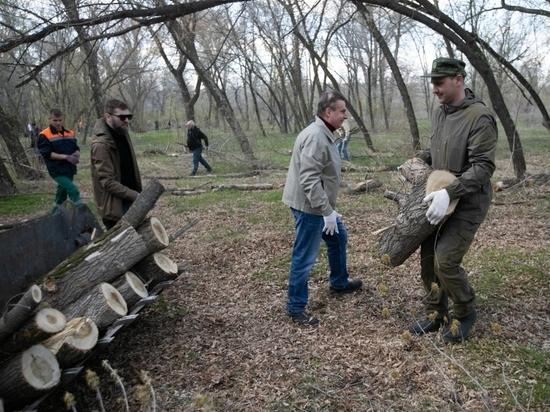 Оренбургские чиновники очистили Зауральную рощу