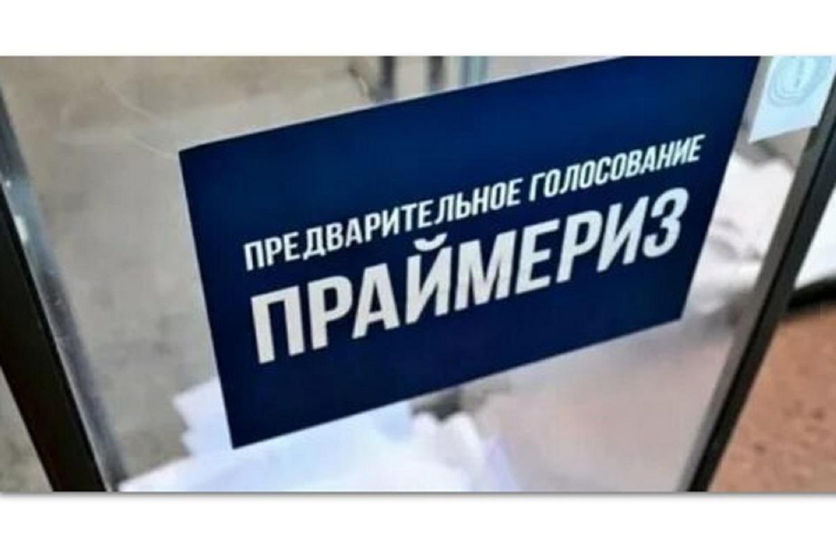 Не места в Думе ради, но животинок для: зоозащитница участвует в праймериз «Единой России»