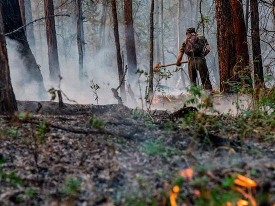 С 1 мая без шашлыков: в Приангарье объявлен противопожарный режим