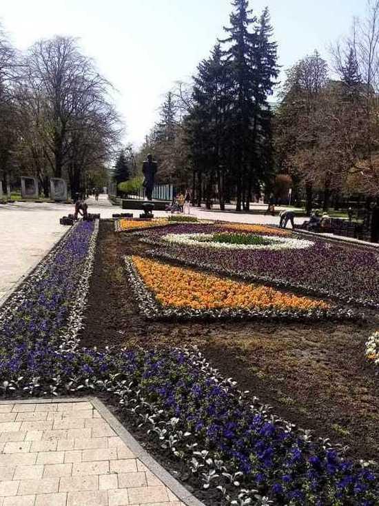 Буйство цветочного разноцветья обещают ставропольцам в мае