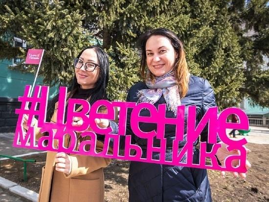 Турсезон открыли в Алтайском крае праздником цветения маральника