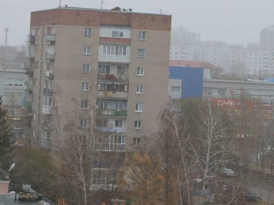 В Омске МЧС предупредило о штормовом ветре до 20 метров в секунду