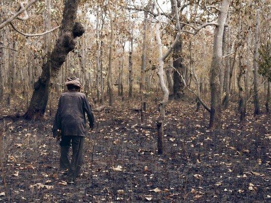 Супруги из Горловки остались без ног из-за взрыва мины
