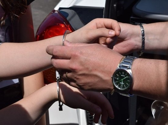 В Красноярском крае за пьяный дебош девушка получила условный срок