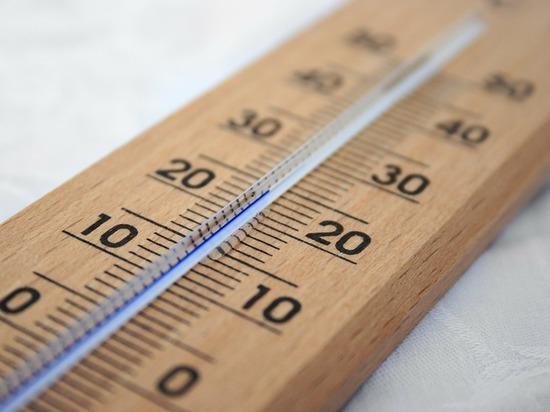 В Красноярске на будущей неделе ожидается до +23 градусов
