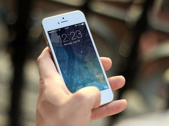 МВД заказало мобильный сервис для борьбы с телефонными мошенниками