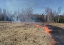 Особый противопожарный режим введён в Подмосковье