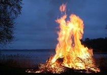 Синоптики предупредили о высоком риске пожаров в Новосибирской области