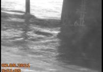Вода в Томи опустилась до безопасного уровня в Новокузнецке