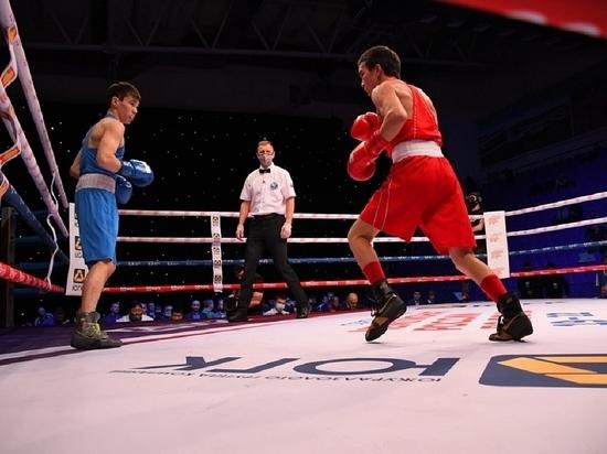 Два подмосковных боксёра стали чемпионами России