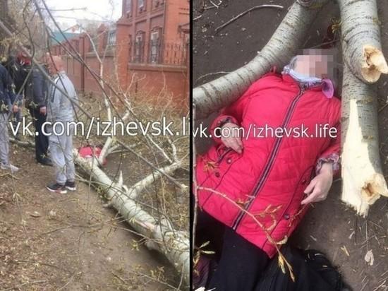 Погибла женщина, на которую в Ижевске рухнуло дерево