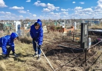 С 3 по 8 мая на кладбищах в Башкирии проведут субботники