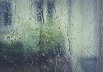 Дождь и мокрый снег прогнозируют в Псковской области 4 мая