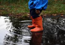 Сильный ветер и дождь будут преследовать Смоленщину 4 мая