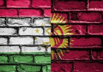 Начальник управления спецподразделений (ОМОН, СОБР, Спецназ) МВД Таджикистана Хуршед Мухаммадзода заявил, что вооруженные силы его страны находились в обороне, а в нападении были представители Киргизии