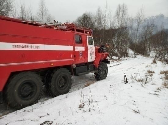 В Тульской области за неделю спасатели ликвидировали 30 пожаров