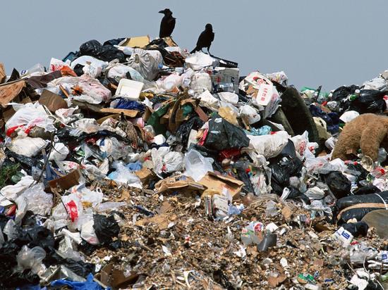 За месячник чистоты из Улан-Удэ вывезли рекордное количество мусора