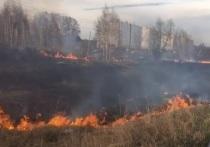 В Красноярске на Лысой горе вновь вспыхнула сухая трава