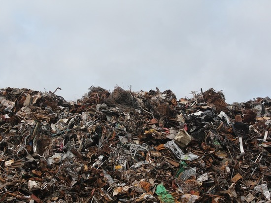 Около 50 тонн мусора вывези с территории энергообъектов в Томске