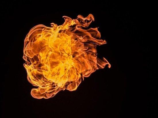 В Нижнекамске из-за поджога горела трава