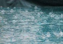 В Красноярске в среду, 5 мая, синоптики прогнозируют сильный ветер и дождь