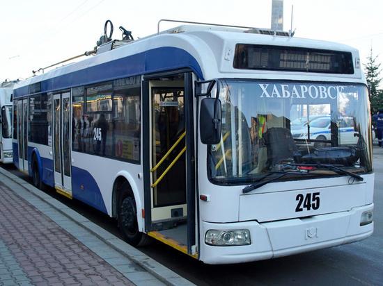 На Родительский день в Хабаровске организуют четыре специальных маршрута