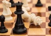 Барнаульская старшеклассница, кандидат в мастера спорта Виктория Лоскутова заняла третье место на первенстве России по шахматам.