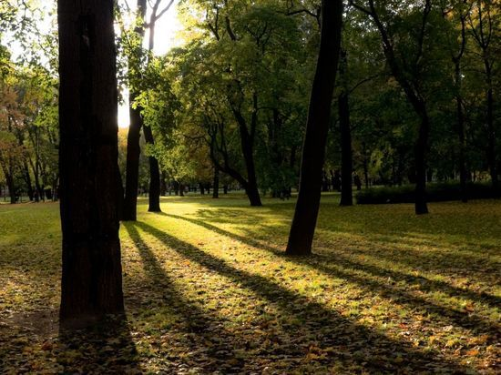 Закрытые из-за непогоды петербургские парки снова открыты