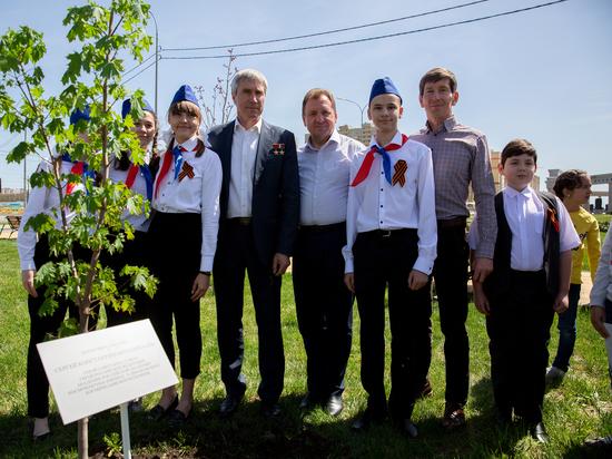 «Дерево мира» вырастят в Ставрополе