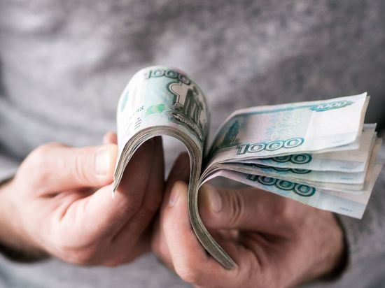 Петербургские домохозяйки создали подпольный банк