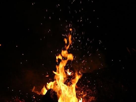 Пожар в Ждановке уничтожил 3 гектара территории