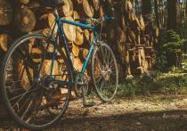 Уголовная ответственность грозит 30-летнему великолучанину за кражу велосипеда