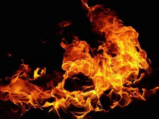 Из-за поджога в Пскове вспыхнули гараж и автомобиль