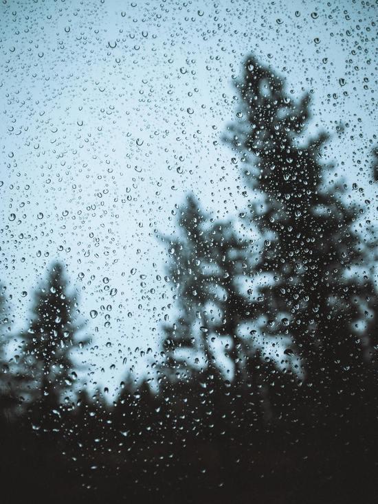 Мокрый снег обещают синоптики 5 мая в Псковской области