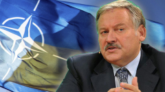 Эксперт-международник оценил шансы на вступление Украины в НАТО