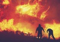 С 5 по 7 мая в Томской области возможно ухудшение пожароопасной обстановки