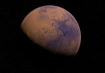 Руководитель компаний SpaceX Илон Маск не исключил, что покорение Марса потребует человеческих жертв, и отметил, что отправляться на Красную планету будут только добровольцы