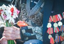 «Бессмертный полк» в Красноярске будут показывать на уличных экранах