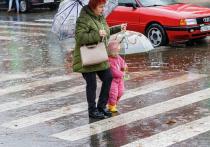 Дожди и грозы прогнозируют псковские синоптики 6 мая