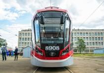 В ООН заинтересовались проектом трамвая от Купчино до Славянки