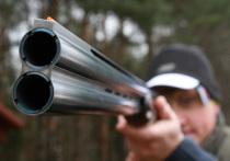 Считать диких зверей в охотничьих угодьях по новым правилам планирует Минприроды