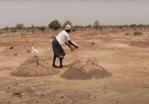 ООН заявила о 155 миллионах голодающих на Земле