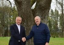 Додон обсудил с Лукашенко геополитическую ситуацию в регионе