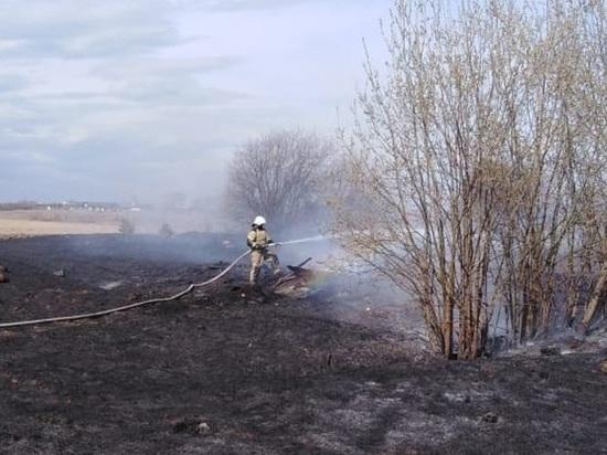 В Свердловской области ожидается сильный ветер, сохраняется пожарная опасность